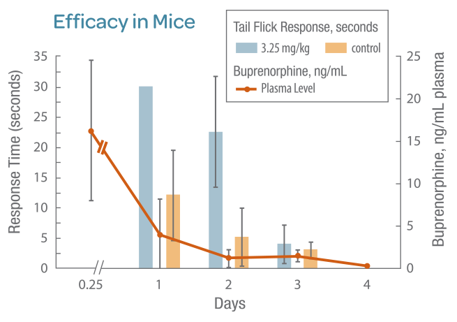 efficacy-in-mice