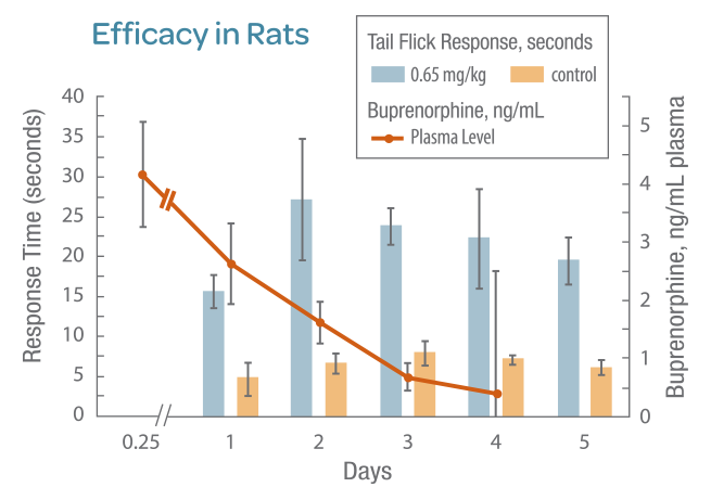 efficacy-in-rats